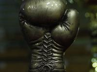 arkowiec-fight-cup-2013-by-malolat-35561.jpg